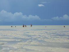 Low tide in Crispim, Beach Amazon Coastal