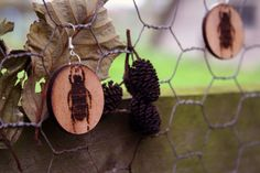 Beetle drop ear rings from Rosebud Casson