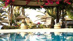 Alion Beach Hotel - The Globe-Setters Society Cyprus Hotels, Ayia Napa, Beach Hotels, Gazebo, Exotic, California, Outdoor Structures, Patio, Vacation