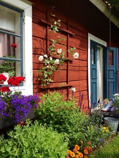 The Ultimate Cottage Garden Ideas Trick Whether you get a little garden or you wish to edit only some component of your lawn, as an example, between two houses, driveway or the rear of the courtyard, our 16 new ideas… Continue Reading → Swedish Cottage, Red Cottage, Swedish House, Garden Cottage, Cottage Style, Home And Garden, Red Houses, Summer Cabins, Cabins And Cottages