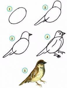 Zanyatiya S Doshkolnikami I Mladshimi Shkolnikami Bird Drawings Drawings Easy Drawings