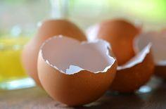 Homemade Remedies Made from Egg Shells Ulcer Symptoms, Home Remedies, Natural Remedies, Egg Shells In Garden, Garden Web, Garden Tips, Kitchen Waste, Garden Pests, Grow Your Own Food