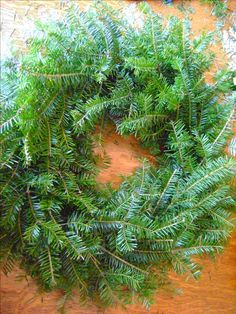 Make Your Own Evergreen Christmas Wreath «