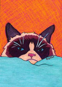 Grumpy Cat Drawing by BZTAT