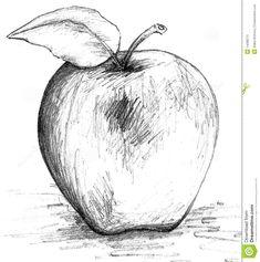Apple black and white sketch apple sketch, fruit sketch, food sketch, apple drawing Pencil Sketch Drawing, Art Drawings Sketches, Pencil Drawings, Charcoal Drawings, Easy Drawings, Drawing Ideas, Apple Sketch, Fruit Sketch, Food Sketch