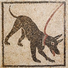 Mosaic of a guard dog. From the House of Orpheus, Pompeii, century AD British Museum Exhibition Life and Death Pompeii & Herculaneum Aug 2013 Pompeii Italy, Pompeii And Herculaneum, Roman History, Art History, Ancient Rome, Ancient History, British Museum, Dog Cave, Roman City