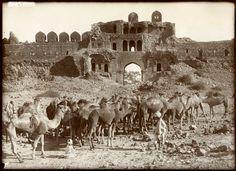 Purana Qila built by Sher Shah Suri: Photographs of Old Delhi from The 19th Century