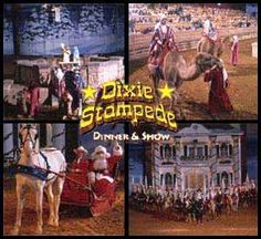Dolly Parton's Dixie Stampede .... amazing Civil War themed horse show with dinner theater.  This actually closed last year and Dolly has re-opened it in 2012 as Pirate's Voyage ... photo also on this Board.
