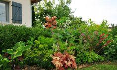 """Ce massif fleurit tout l'été, pourtant il est au Sud. Les plantes s'y perpétuent depuis quelques années et j'entretiens ce massif avec toujours autant de plaisir que de facilité ! Lovée dans mon jardin, c'est 'La pièce d'eau"""" ou plutôt la roue en pierre avec son petit jet d'eau, qui marche grâce au soleil, c'est le côté écolo de la chose!"""
