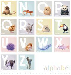 Alphabet animal print nursery wall art illustrated by John Butler at Little Blue Zebra