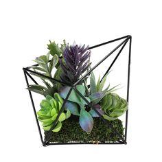 Artificial Succulents In Metal Frame