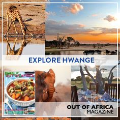 Explore Hwange with OUT OF AFRICA Hwange National Park is the largest game reserve in Zimbabwe. Buckle up for a trip through Hwange and start planning your adventure with OUT OF AFRICA Magazine June 2016 - OUT NOW! See more at http://ift.tt/1U6C1sm