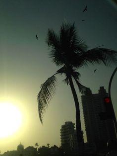 Haji Ali Bay Sunset, Mumbai Travel Guides, Mumbai, Ali, Celestial, Sunset, Love, Outdoor, Sunsets, Amor