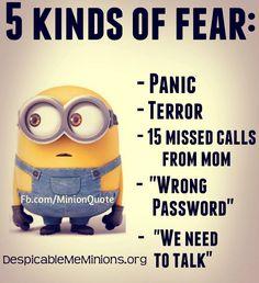 5 kind of fear My Minion, Minion Humor, Minion Stuff, Despicable Minions, Cute Minions, Minions Funny Quotes, Despicable Me Quotes, Evil Minions, Funny Memes