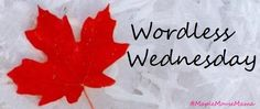 Wordless Wednesday: