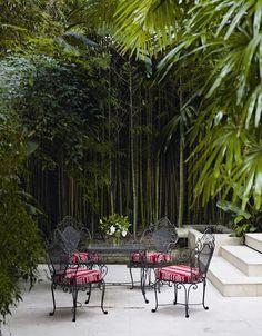 Bilderesultat for bamboo garden design Outdoor Living Areas, Outdoor Rooms, Outdoor Gardens, Outdoor Decor, Outdoor Patios, Outdoor Kitchens, Living Spaces, Outdoor Furniture, Home Garden Design