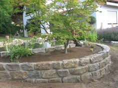 Mauer, Garten, Baum, gemauertes Beet, Trockenmauer, Naturstein,