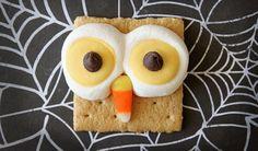 Graham Cracker Owl