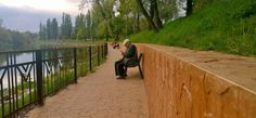 Crișul Repede, Oradea