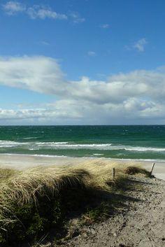 Urlaub an der Ostsee - unsere schönsten Tipps für Fischland-Darss-Zingst