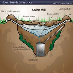 Another way to collect water is to make a solar still. To do this, you'll need some plastic sheeting or a poncho, a digging tool, a container and a rock.