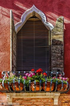 across a balcony of flower pots in the Cannaregio sestiere of Venice