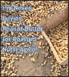 Never Buying peanut Butter or Roasted Nuts Again. Love the cost break down on doing it yourself here!