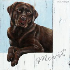 Movit - 56 x 56 cm | hond | in opdracht | dieren | schilderij | oud hout | paneel | dog | on commission | animals | painting | old wood | panel |