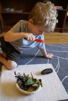 Montessori Fall Activities