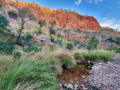 WOW what a gorge! We set off exploring this gem around in the afternoon and made it to the top pool in around We then enjoyed… Australia Travel, Offroad, Playground, Exploring, Grand Canyon, Gems, Nature, How To Make, Top