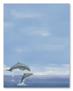 dolphin stationary | Two Dolphins Stationery Letterhead