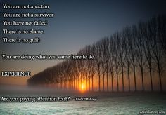 You are not a victim You are not a survivor You have not failed There is no blame There is no guilt You are doing what you came here to do... EXPERIENCE  Are you paying attention to it? © Edel O'Mahony  www.books.edelomahony.com www.media.edelomahony.com www.edelomahony.com
