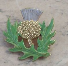 Old thistle brooch with enamel