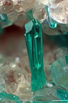 Dioptase crystal / Christmas Mine, Arizona