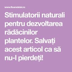 Stimulatorii naturali pentru dezvoltarea rădăcinilor plantelor. Salvați acest articol ca să nu-l pierdeți! Deck Railings, Salvia, Cross Stitch Charts, Growing Plants, Home And Garden, Backyard, Agriculture, Plant, Patio