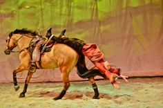 Cavalia - Trick Riding