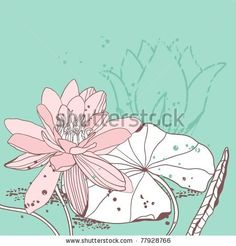 water lily - stock vector