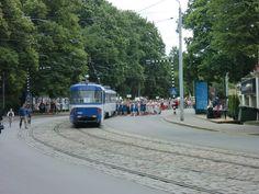 Parade July 12 2015
