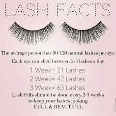 """32 Likes, 4 Comments - A Touch Of Color Makeup & Hair (@atouchofcolormakeup) on Instagram: """"Lash Facts!  Its important to keep up on your lash fills to keep your own lashes healthy and…"""""""
