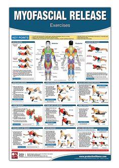 Myofascial Release Chart/Poster; Foam Rolling Chart, Muscle Massage, Myofascial Release Poster, Muscle Rolling Chart, Fascia Adhesion Release, Trigger ... Self Massage Chart, Massage Therapy Poster