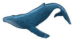 Humpback Whale Clip Art Clipart Panda Free Clipart Images Whale pictures Whale Whale art