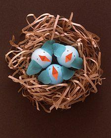 pintinhos com cascas de ovos