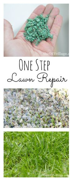 Lawn Repair with Pennington 1 Step Complete - The DIY Village Lawn Repair, Yard Care, Green Lawn, Garden Inspiration, Garden Ideas, Garden Tips, Outdoor Projects, Outdoor Ideas, Outdoor Decor