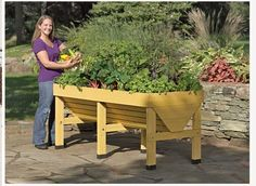 Veg Trug Patio Garden allows you to grow a vegetable garden in a small space, has plastic feet to protect the wood from wet surfaces, the container is fitted with a fabric liner to keep soil contained while letting access water drain, made of FSC certified sustainable, plantation-grown fir wood with a non toxic stain, also available in a smaller compact size if necessary