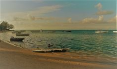 MAURICE : 4 et FIN pour BAIN BOEUF plage et villa - Poésie - Blagues - Recette