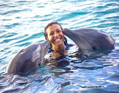 spending time with the dolphins