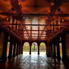 Ny Ny, I Love Ny, Visual Diary, Central Park, Erika, Travel Guides, Places Ive Been, New York City, Destinations