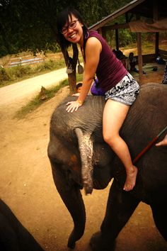 """Crazy elephant ride through the jungle in Singapore!""  Roseanne Goh (MChem)"