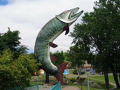 """""""Husky, the Muskie"""" -- Kenora, Ontario"""