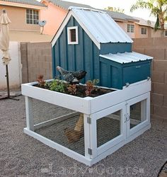 The cutest little chicken coop ... Love how this one turned out! Free plans for you today! Direct link in profile. #chickencoop #chickencoops #diyfurniture #anawhite #diy #woodworking #buildstuff #homesteading #backyardchickens